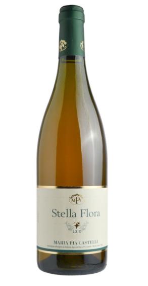 STELLAFLORA2012